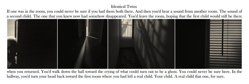 Identical Twins , 2018.