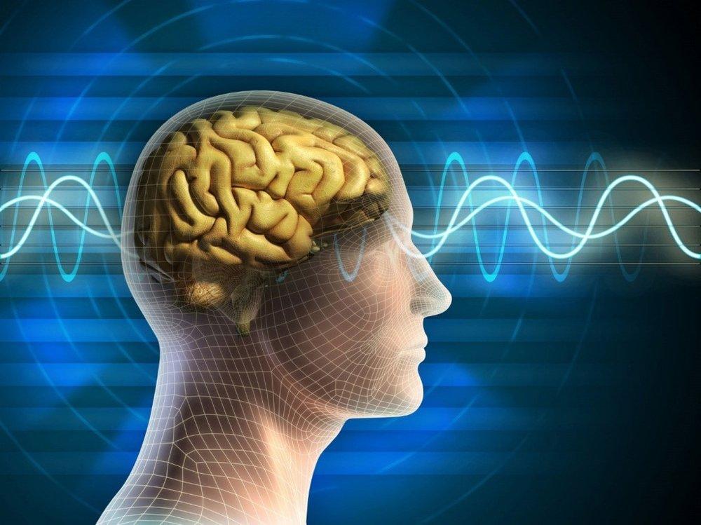 Dr. Tarrant participates in an EEG NeuroMeditation session involving a brainwave scan and neurofeedback.