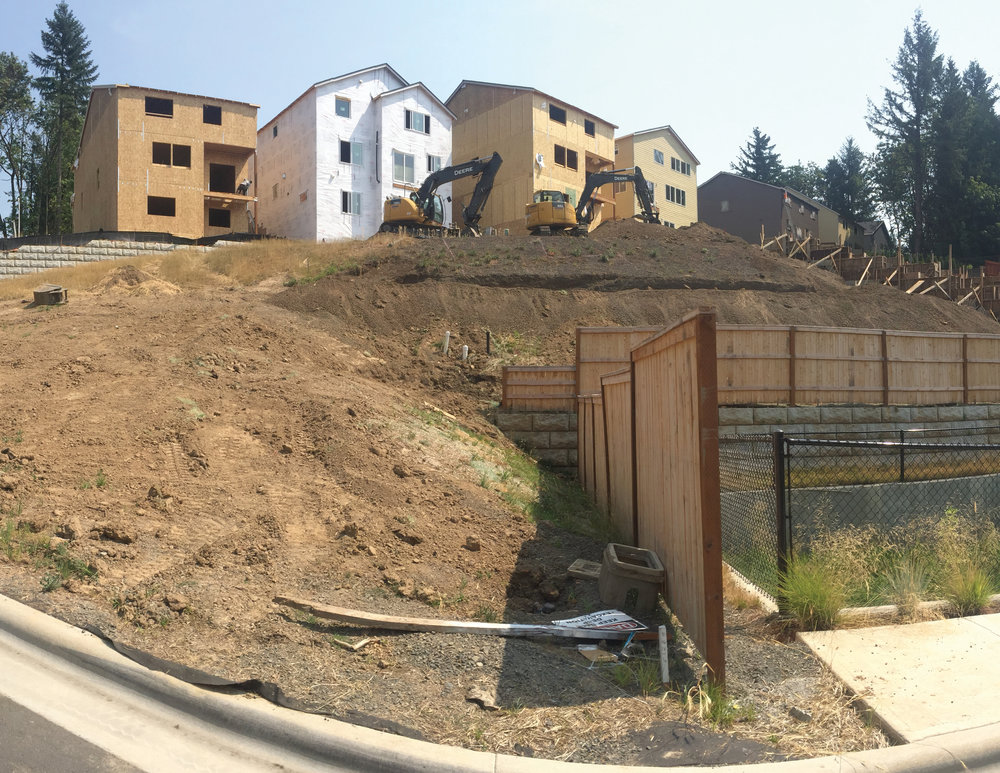 Overview of construction site with functioning bioswale.