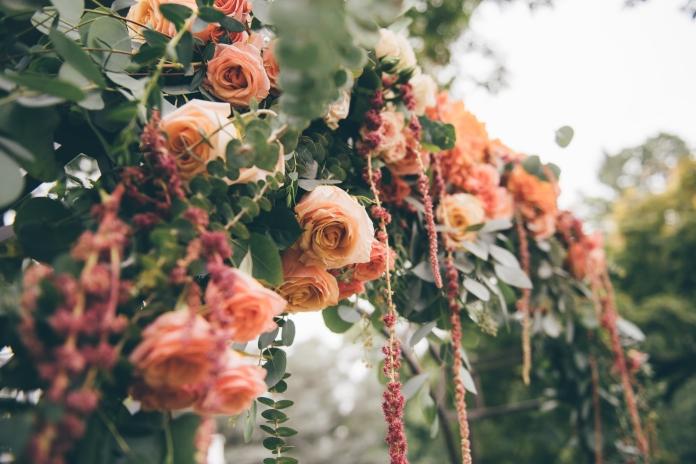 Flowers by G Bella 3.JPG