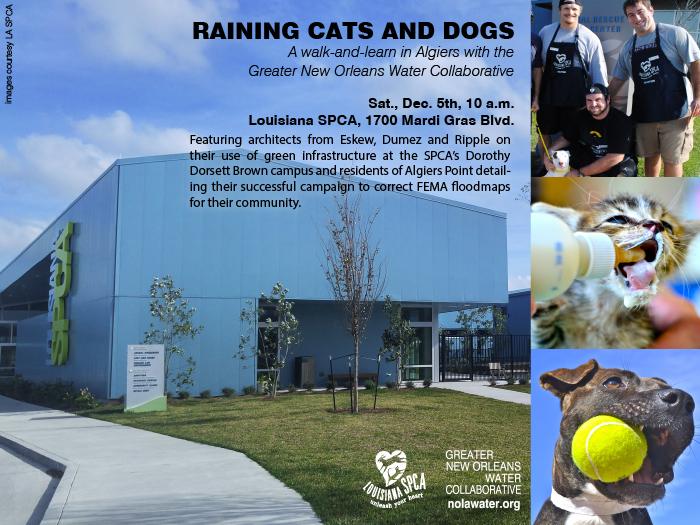 SPCA_Walk-Learn_12.05.15.jpg