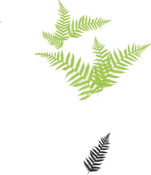 silkscreen5.jpg