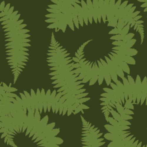 fern3.jpg