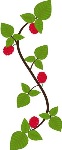 raspberry panel.jpg