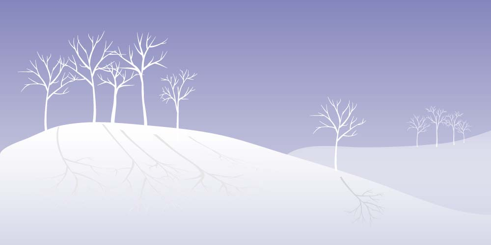 winter trees.jpg