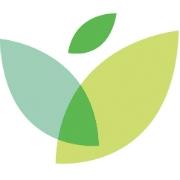 ivywise-squarelogo-1467628215208.png