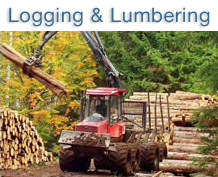 logging.png