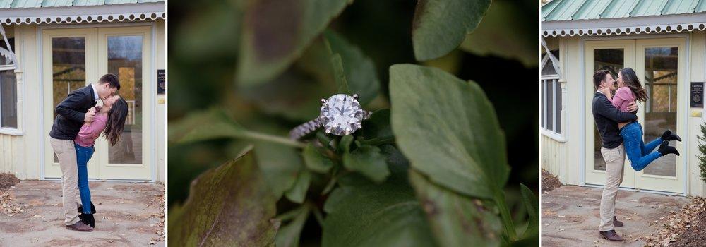 Wisconsin wedding photographer, Green Bay Botanical Gardens Proposal, Engagement Photos