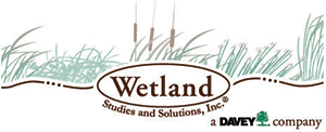wetland-ssi.png