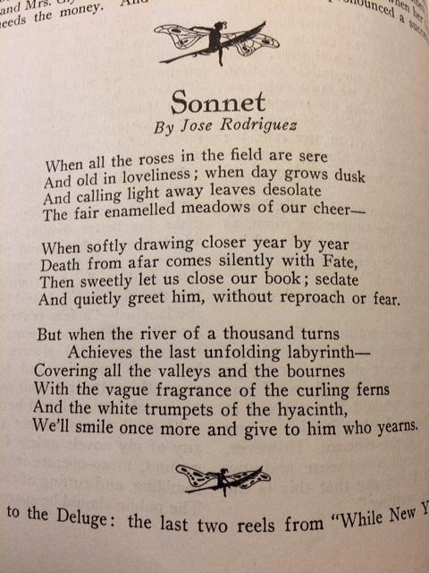 photodramatist_sonnet