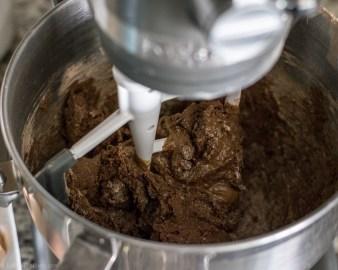 Chocolate-Espresso-Biscotti-5.jpg