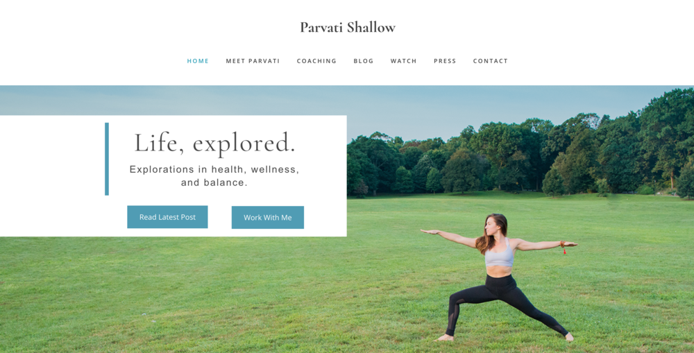 Concept Theory Website Design for Parvati Shallow