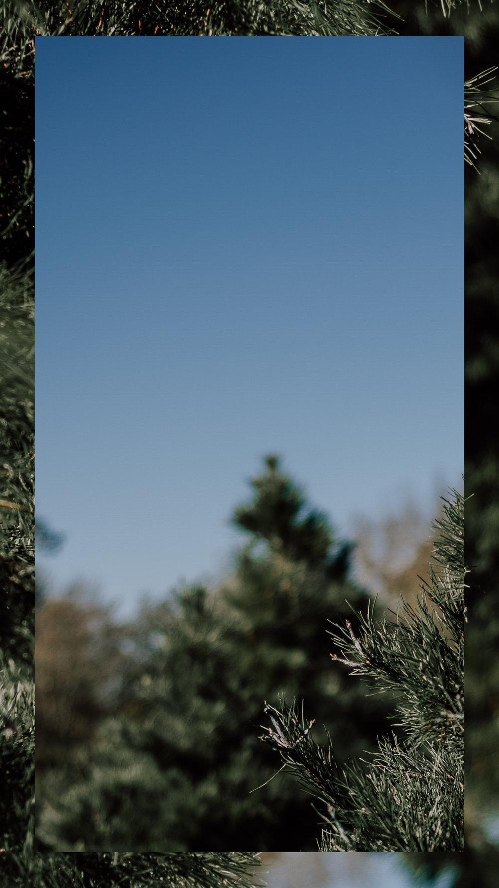 Insta-story-backgrounds3.jpg