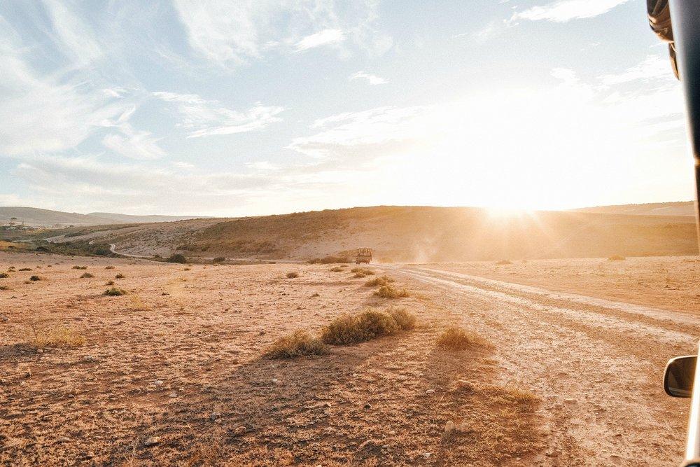 Safari-Sonnenuntergang.jpg