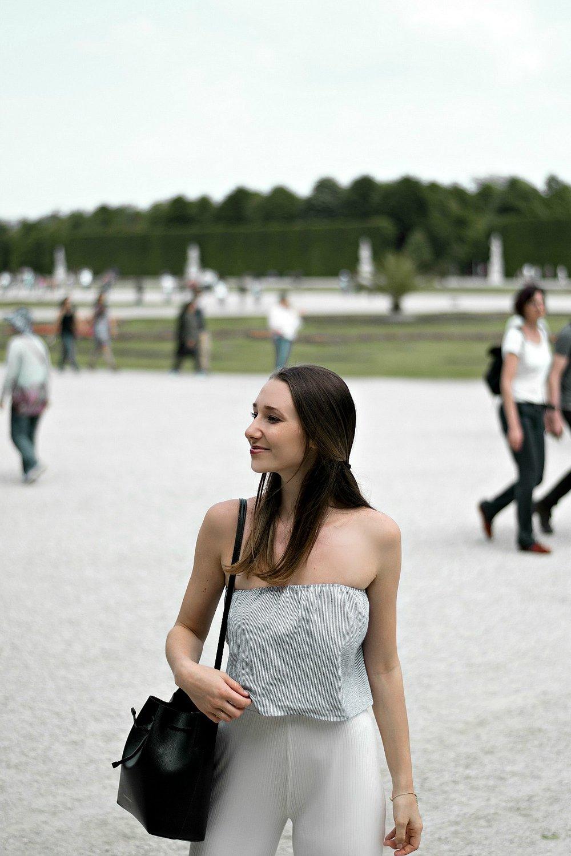 Wien von seiner schönsten Seite - Besonders Frühling und Sommer eignen sich um anschließend zum Schönbrunner Schlossparkzu spazieren. Wer noch Zeit und Muße hat, kann den Tag im Botanischen Garten beim Hietzinger Tor ausklingen lassen.