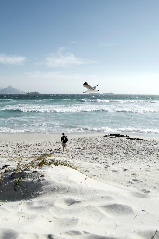sanddünen, delphine und ruhe - Der an der Westküste von Kapstadt gelegene Strand ist beliebt bei Kitesurfern und bekannt dafür, dass immer wieder Delphine beobachtet werden können. Wir genossen eines der traumhaftesten Panoramen von Kapstadt - vor uns lag der mächtige Tafelberg, hinter uns ragten wunderschöne Sanddünen in die Höhe.