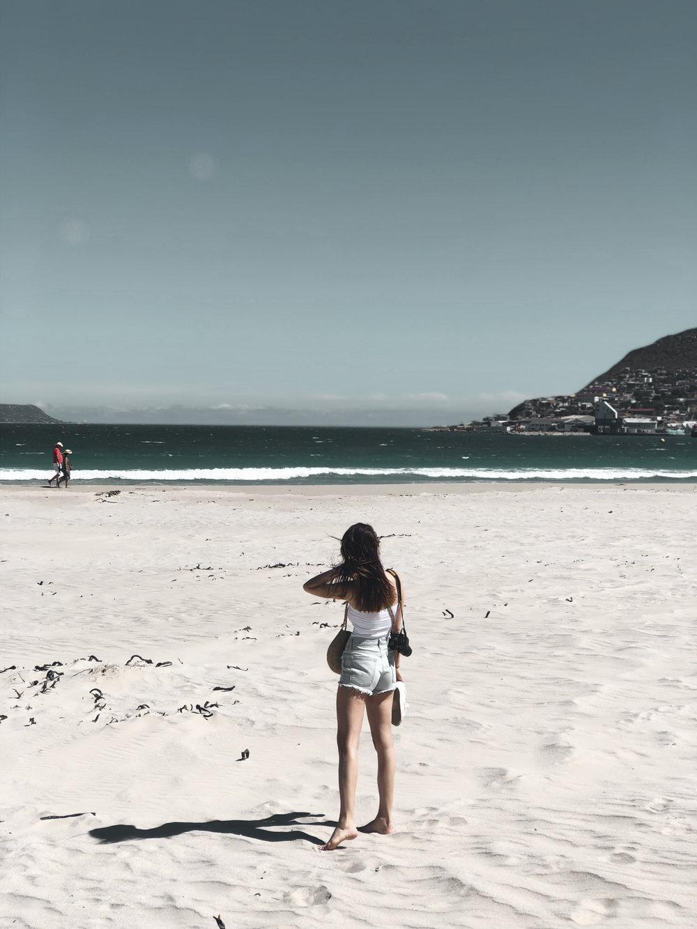 ein magischer fischerort - Der kleine Fischereiort Hout Bay mit seiner gleichnamigen Bucht ist im Osten umgeben vom Chapman's Peak und im Westen vom Karbonkelberg. An der Bucht war es, wie fast überall in Kapstadt, derart windig, dass wir von der Hitze nichts mitbekamen.