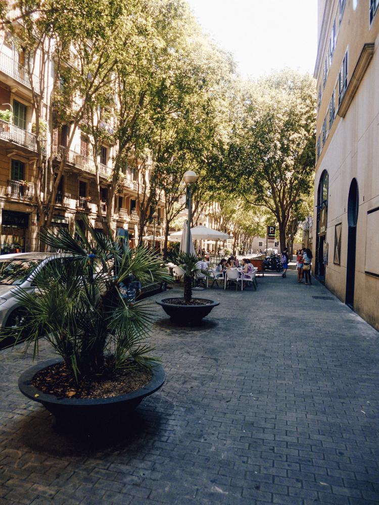 - Eine Allee aus Bäumen spendet Schatten und die zahlreichen Bänke laden zum Ausruhen ein.Bei jedem meiner Besuche und auch während unseres Auslandsjahres haben wir in diesem Stadtteil gewohnt. Die meisten Besucher von Barcelona begehen den
