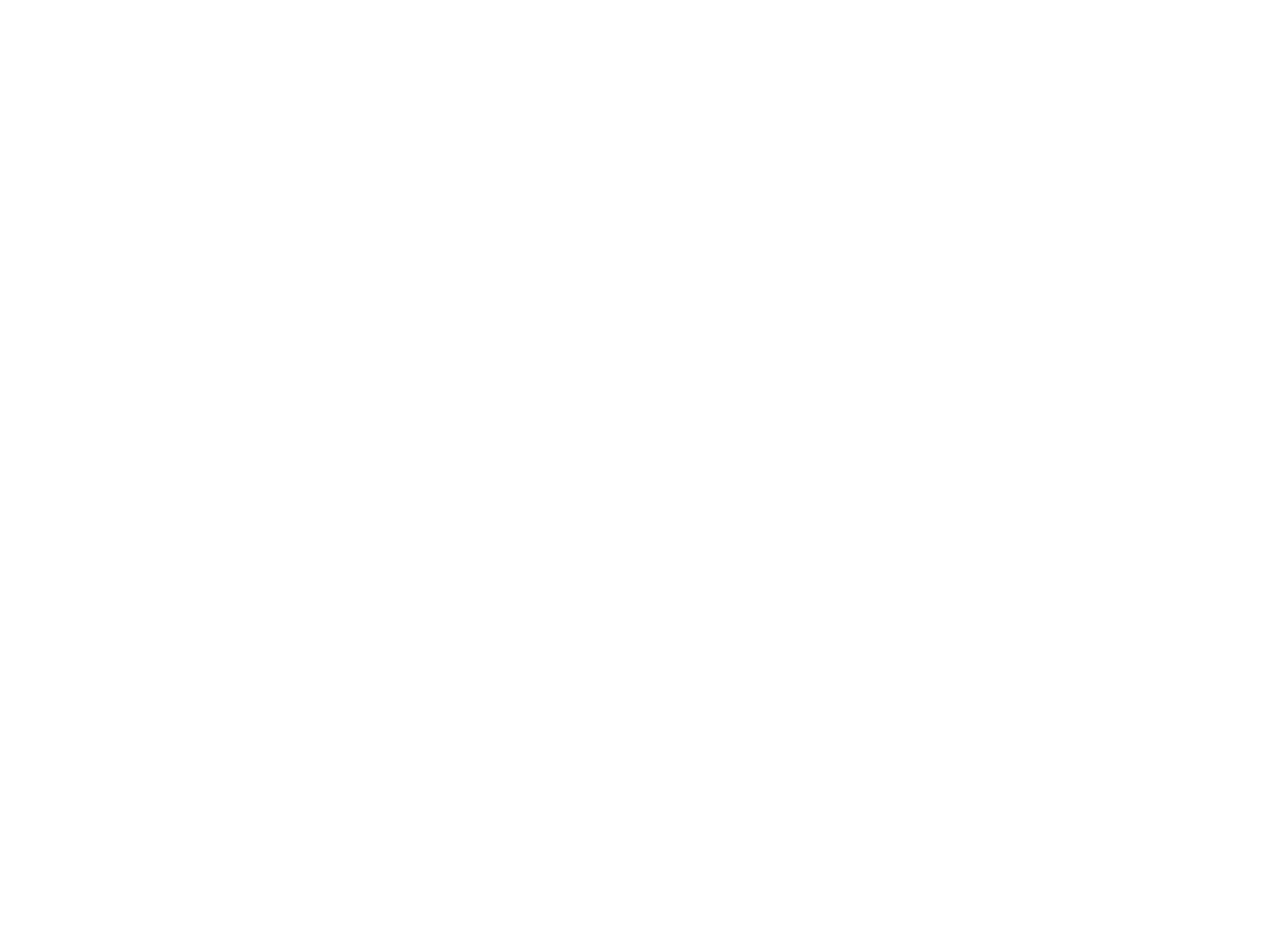BT Restaurant / Tavern