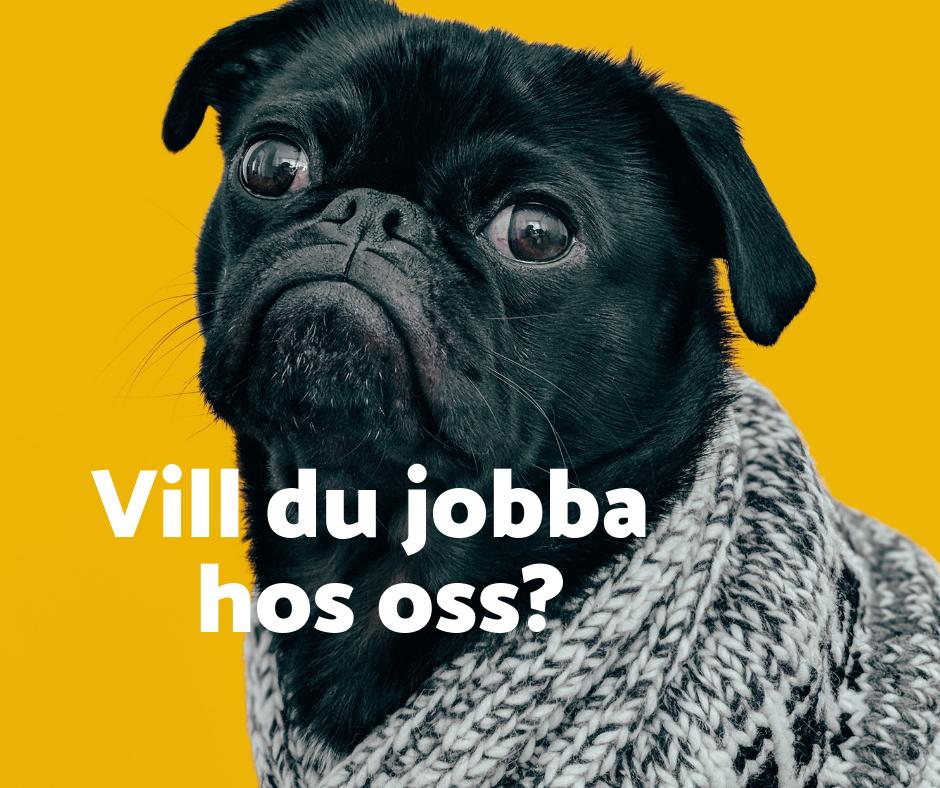 VILL DU JOBBA HOS OSS_.png
