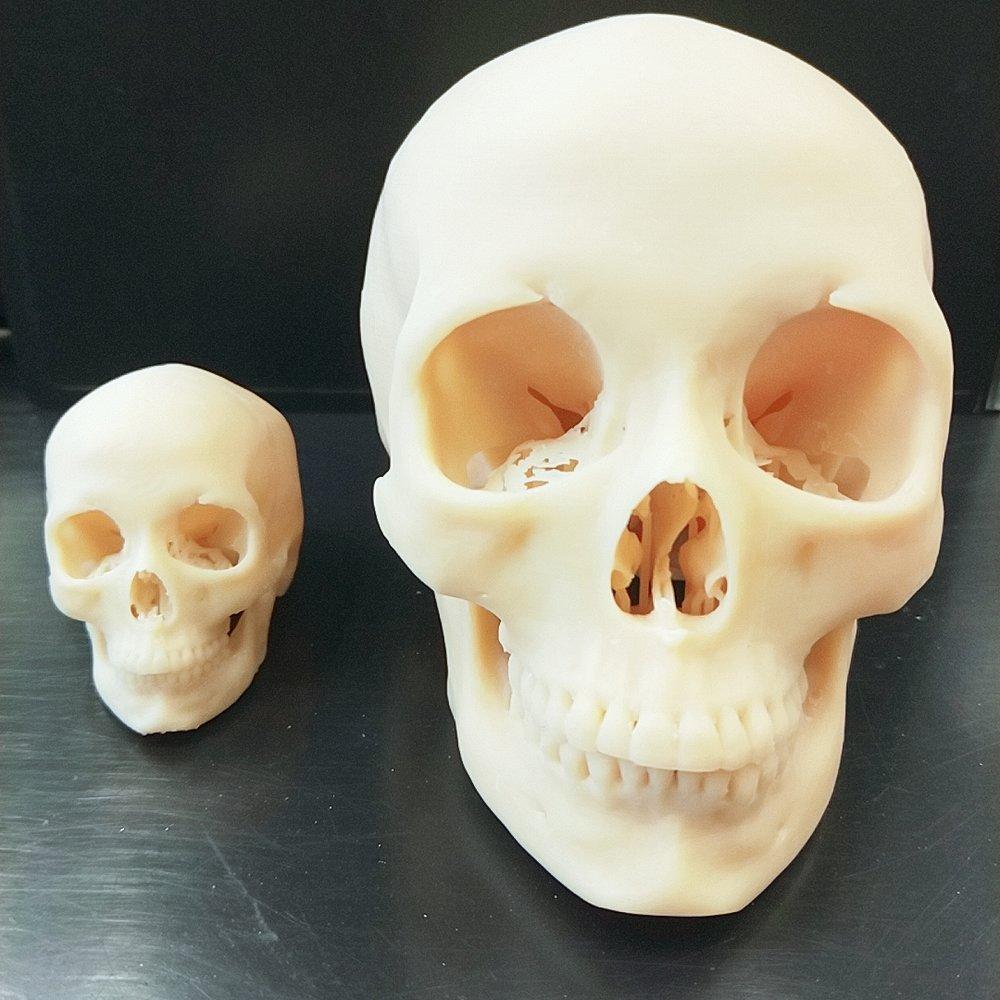 OMaker系統依照成像輸出30%(左)及66%(右)大小頭骨模型,細節依舊清楚呈現!