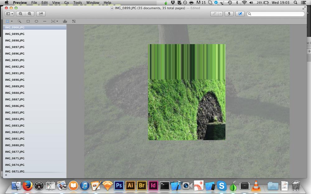 treesGlitch.png