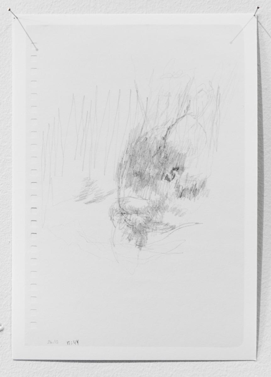 Silence (7.10–17.11. 2014), 2014 (detail)