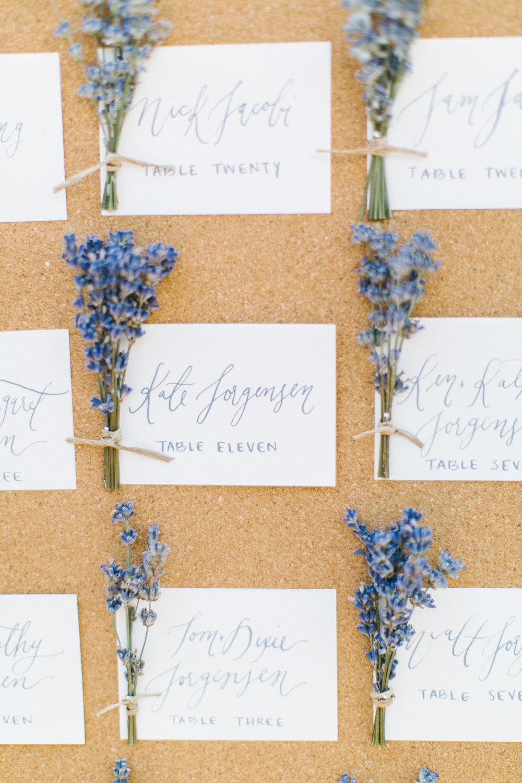 Colorado Georgia Private Estate Wedding Photographer0003.jpg