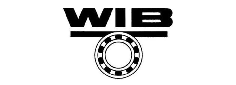 WIB logo_2.jpg