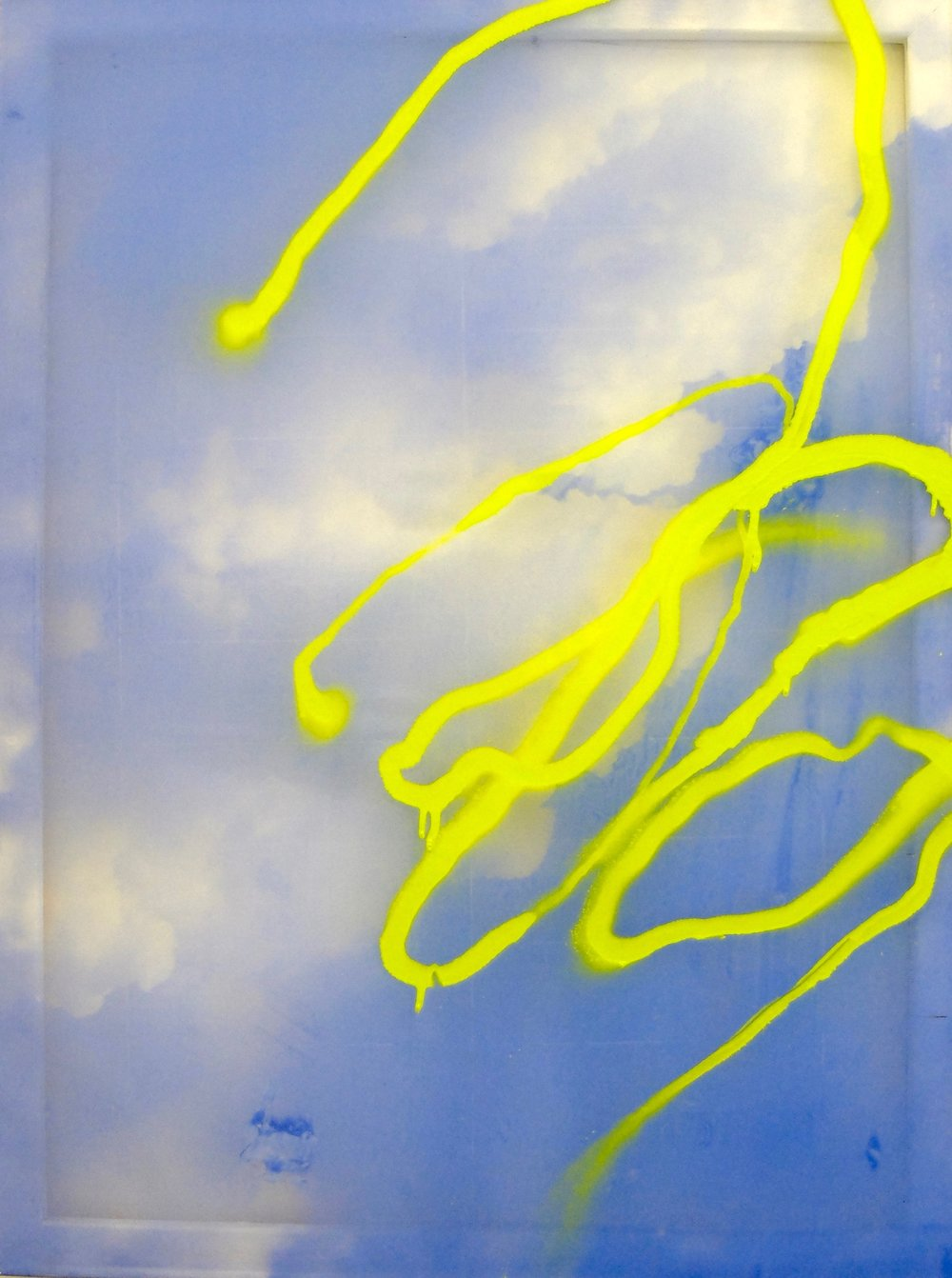 SHolt_Of course it would have been great 100x75cm Acrylic screen print and spray on Polyuerethine.jpg