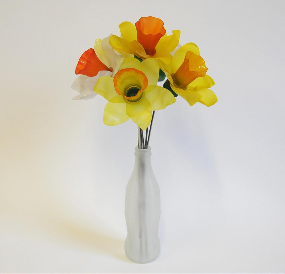 Daffodil Half Dozen.jpg