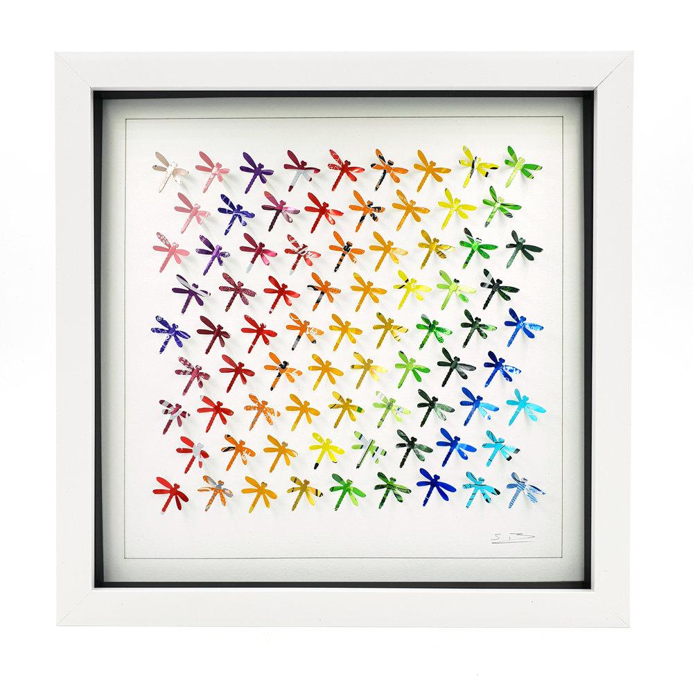 Rainbow Dragonflies W.jpg