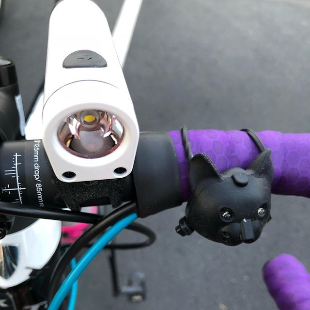 You have two bike lights.  One is 800 Lumens and made for day and night, and the other looks like a cat. . Clearly the answer is both.  The cat one meows. . #cycling #bikelights #bontrager #triathlontraining #triathlete
