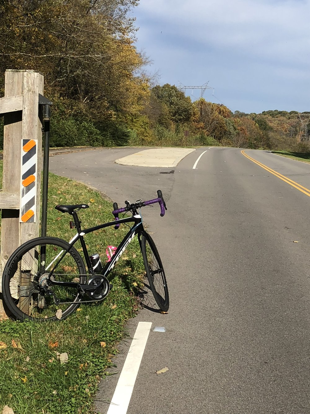 Trek Domane on Natchez Trace