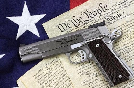 gunConstitution.jpg