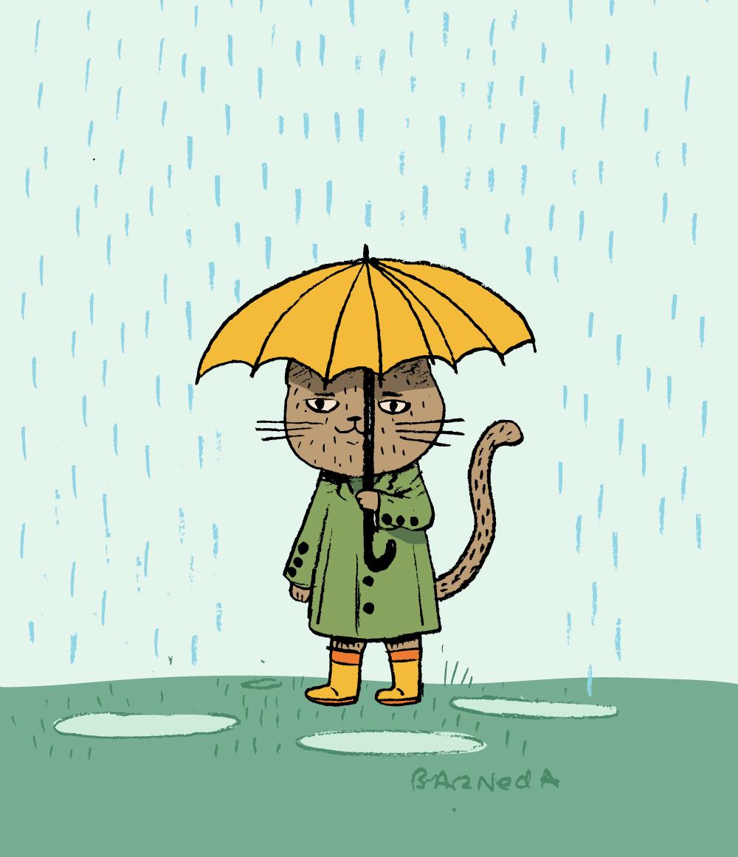 06_Raining_cats_barneda.jpg