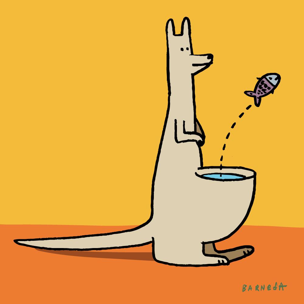 10_kangaroo_fish_barneda.jpg