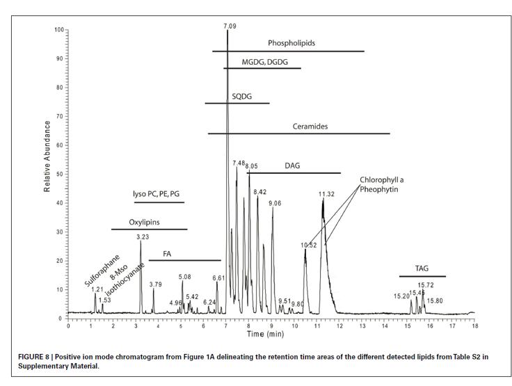 Chromatogram from Lipidomic method