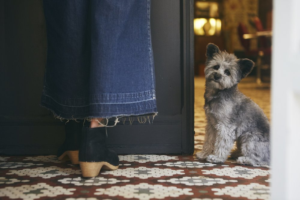 Fringe Salon NY. Neighborhood hair salon on Manhattans Lower East Side. Blue denim fringe pants. Clog shoes. Vintage tile floor. Cute little puppy.
