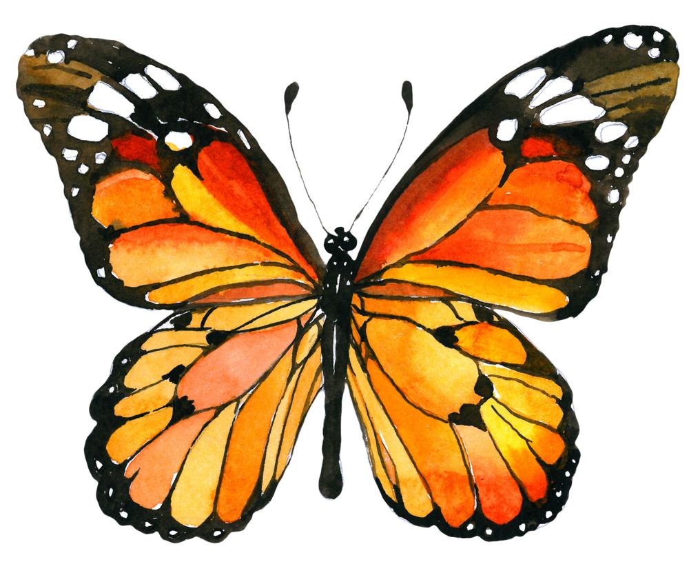 Doula Logo - TEMP cropped.png