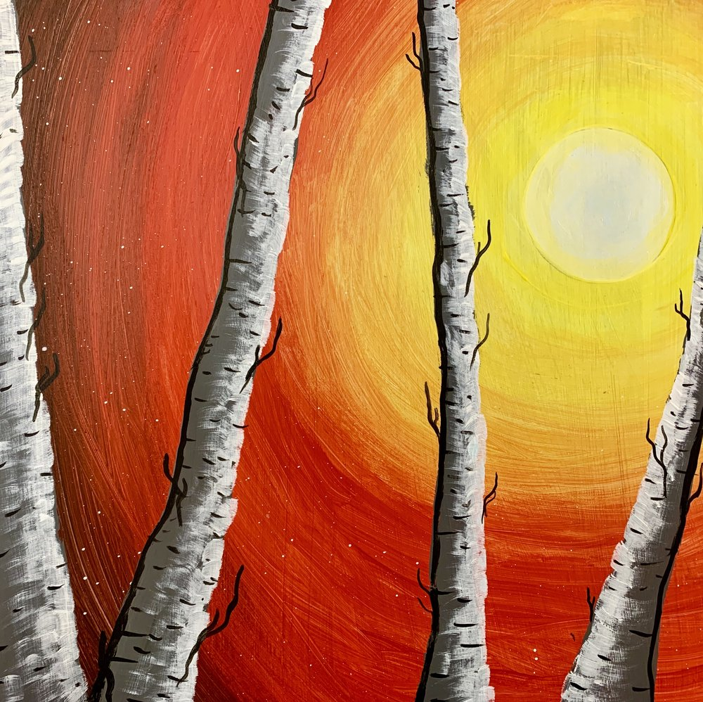 Sunset Birch Trees