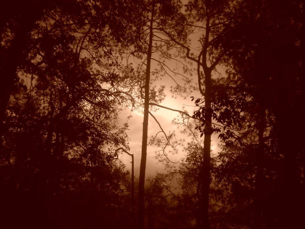 woodstock 037.jpg