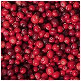 Cranberries -