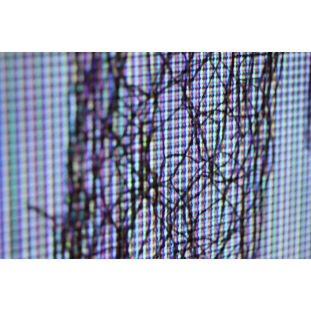 14.NoSecretsdetail.jpg