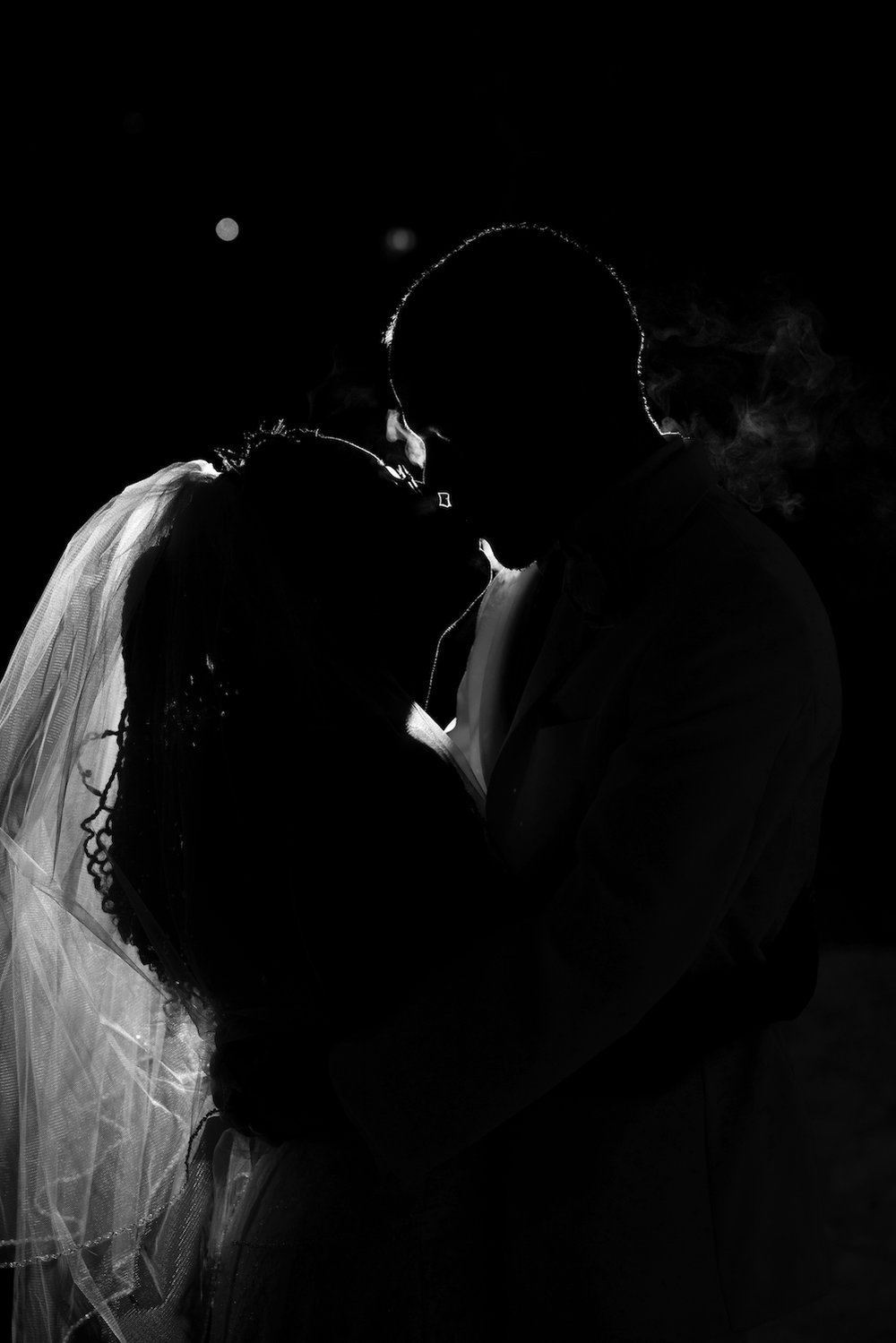 | southern Minnesota wedding photographer Danielle Albrecht | black and white silhouette