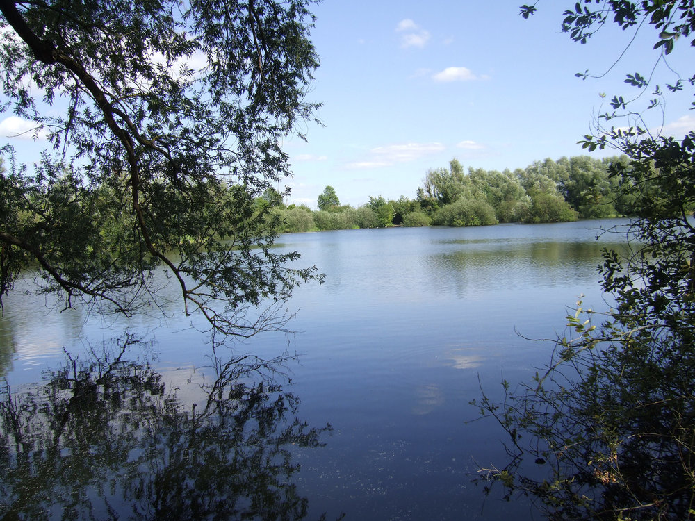 Milton country park.jpg