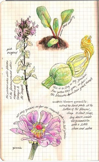 This fantastic journal picture is from an unidentified source on Pinterest. Not my pic, I am nowhere near this talented. My journals are so boring in comparison! I think I need to up my game!