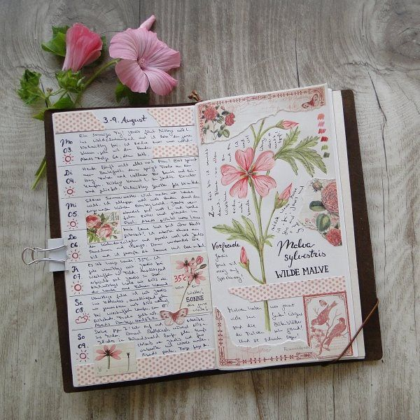 Beautiful garden journal from martinalenhardt on Instagram.