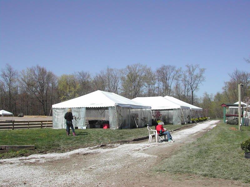 Chagrin Valley Horse Show