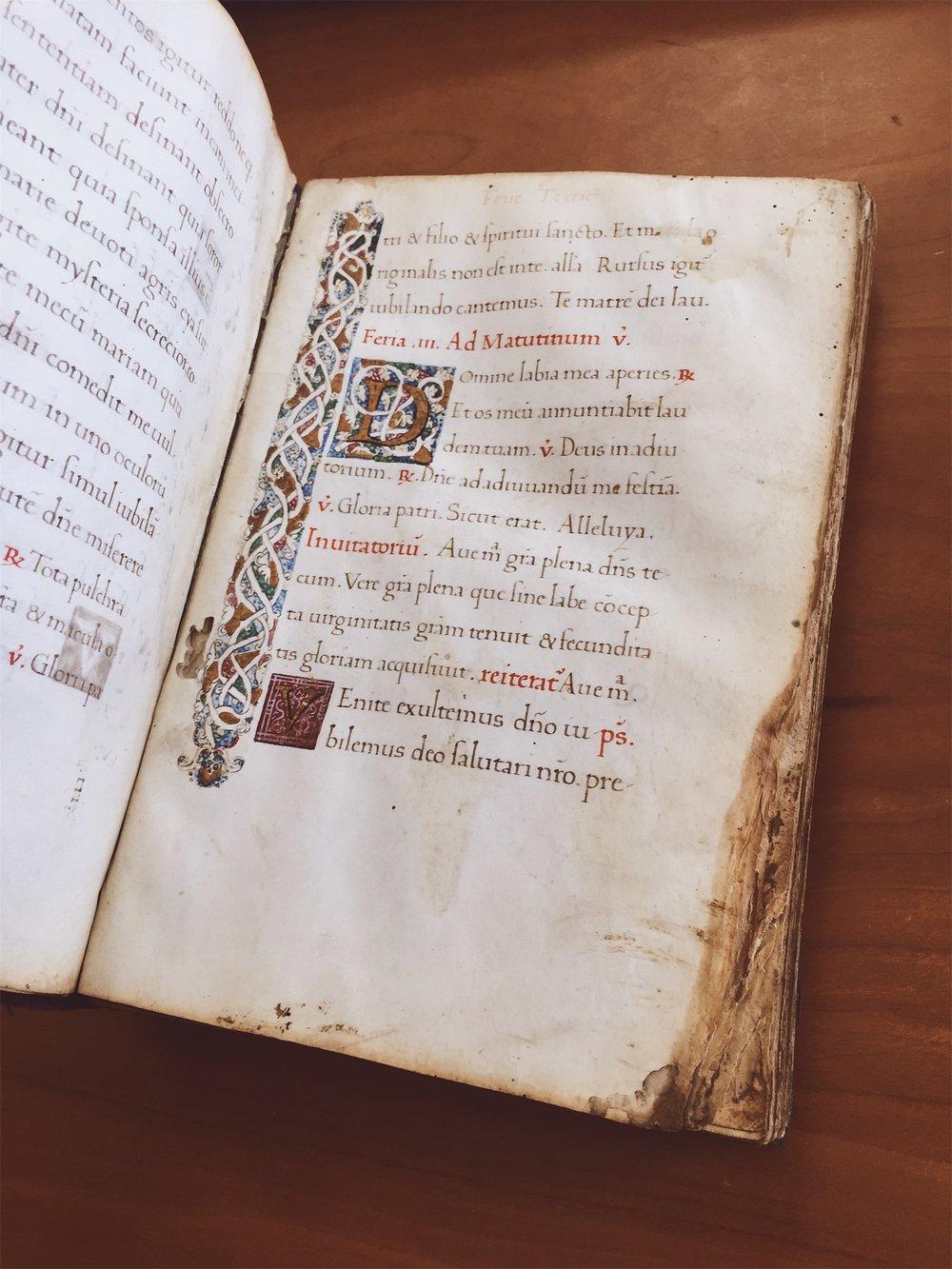 Manuscript illuminators added colors by hand